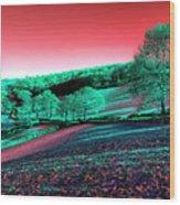 Exmoor In The Pink Wood Print