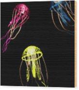 Exotic Aquarium Wood Print