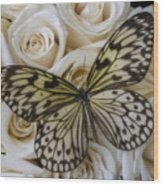 Exotic Butterfly On White Roses Wood Print