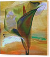 Exotic Calla Lilly Wood Print