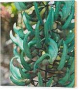 Exotic Jade Vine Wood Print