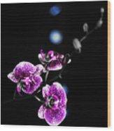 Exotic Orchid 6 V2 Wood Print