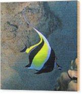 Exotic Reef Fish  Wood Print by Bette Phelan