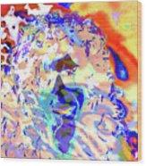Expansion 104  Wood Print
