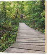 Explore Nature Wood Print