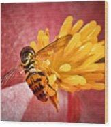 Exploring A Flower Wood Print