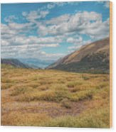 Exploring Guanella Pass Wood Print