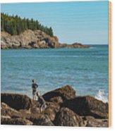 Exploring Rocks At Sand Beach Wood Print