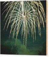 Explosive Flowers 12 Wood Print