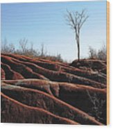 Exposed And Eroded Badlands Wood Print