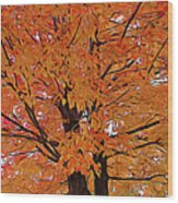 Expressionalism Golden Tree Wood Print