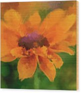 Expressive Sunflower Wood Print