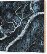 Exprosure Wood Print