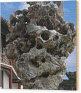 Exquisite Jade Rock - Yu Garden - Shanghai Wood Print