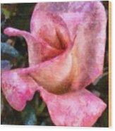 Exquisite Pink Wood Print