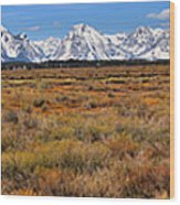 Extended Willow Flats Panorama Wood Print