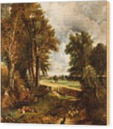 Extensive Landscape With Boy Drinking Water Wood Print