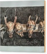 Extinction Wood Print