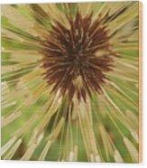 Extreme Dandelion Wood Print