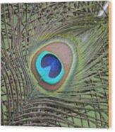 Eye  2 Wood Print