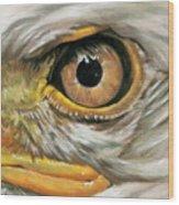 Bald Eagle Gaze Wood Print
