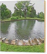 Eye Lake Wood Print