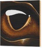Eye Of Baby Bronze Wood Print