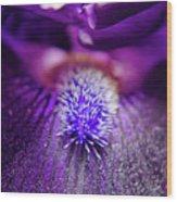 Eye Of Iris Nature Photograph Wood Print