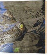 Eye Of The Crocodile Wood Print