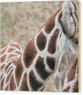 Eye Of The Giraffe. Wood Print