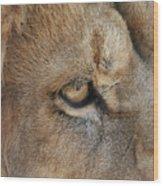 Eye Of The Lion #2 Wood Print