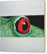Eye Of The Red Eyed Tree Frog Wood Print