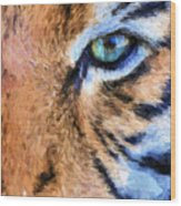 Eye Of The Tiger Wood Print by JC Findley
