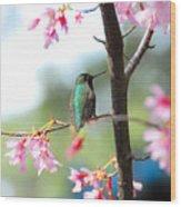 Eye On Spring Wood Print