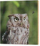 Eye On The Fly Wood Print