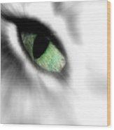 Eye On You Wood Print