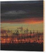 Eye Over Sea Oats Wood Print