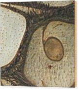 Eye Spy Wood Print