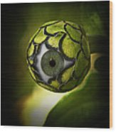 Eye Will See You In The Garden Wood Print
