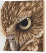 Eyeful Wood Print