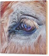 Eyelashes Wood Print