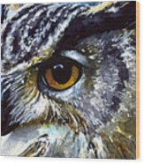 Eyes Of Owls No.25 Wood Print