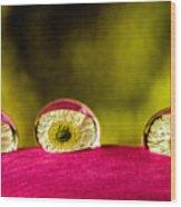 Eyes Of The Petal Wood Print