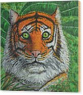 Eyes Of The Tiger Wood Print