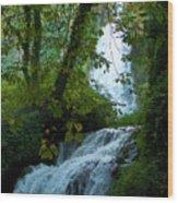 Eyes Over The Flowing Water Wood Print