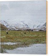 Eyjafjallajokull Iceland Wood Print