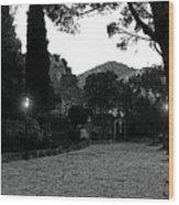 Eze Park Wood Print