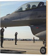 F-16 Fighting Falcons Parked Wood Print by Stocktrek Images