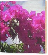 F15 Bougainvilleas Flowers Wood Print