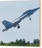 F18 - Take Off Wood Print